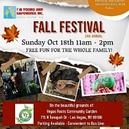 I'm Young and Empowered, Inc Fall Festival Sunday, October 18