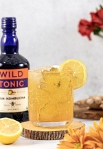 Fun Holiday Cocktail Ideas Featuring Wild Tonic Jun Kombucha
