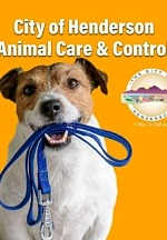 Henderson Animal Care and Control Celebrates an Impressive Save Rate for 3rd Straight Year