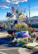 Las Vegas Cyclist Memorial Announces LV5 Ghost Bike Unveiling and Memorial at Las Vegas Ballpark January 23, 2021