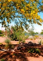 Henderson Ranked 2nd Safest Large City in the United States
