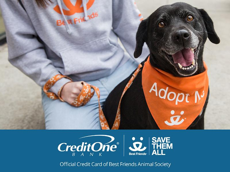 Credit One Bank Pledges $1 Million to Best Friends Animal Society