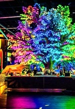 Las Vegas' Newest Enchanting Cocktail Bar, Oddwood, Introduces New Munchies and Cocktail Menu