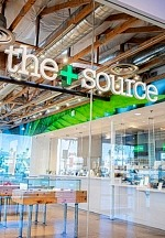 The Source+ to Support The Shade Tree Throughout March