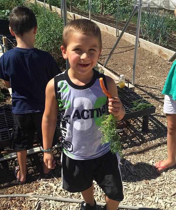Local Non-Profits Participate in Earth Day Celebrations:  Create a Change Now, Lion Habitat Ranch, Vegas PBS and Urban Fresh Farms