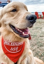 Dogs Ride Free on Rail Explorers Las Vegas Rail Bikes