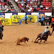 South Point Hotel, Casino & Spa's Arena and Equestrian Center to Host the West Coast Regional Finals Rodeo, May 14–15