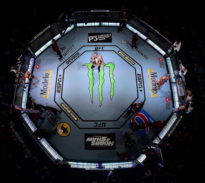 The Return of The Ultimate Fighter: Team Volkanovski vs. Team Ortega