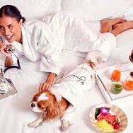 Encore At Wynn Las Vegas Introduces Dog-Friendly Resort Program