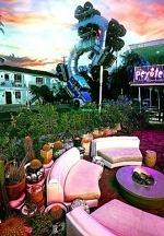 Peyote to Bring Retro Desert Charm to Downtown Las Vegas