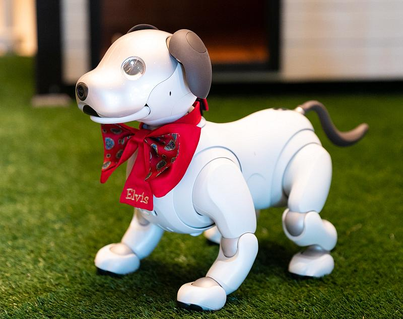 Resorts World Las Vegas Adds More Tech-Forward Fun with Three Robotic Puppies to Welcome Guests Upon Arrival