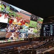 Circa Sports Hosting Expert Sports Betting Panel, August 28
