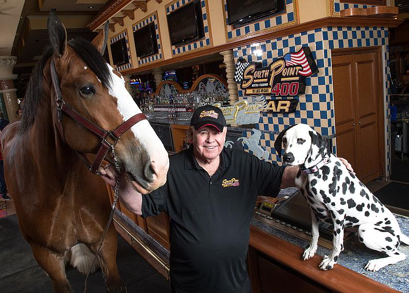 South Point Hotel, Casino & Spa Kicks off Race Week with Budweiser Clydesdales, Sept. 22