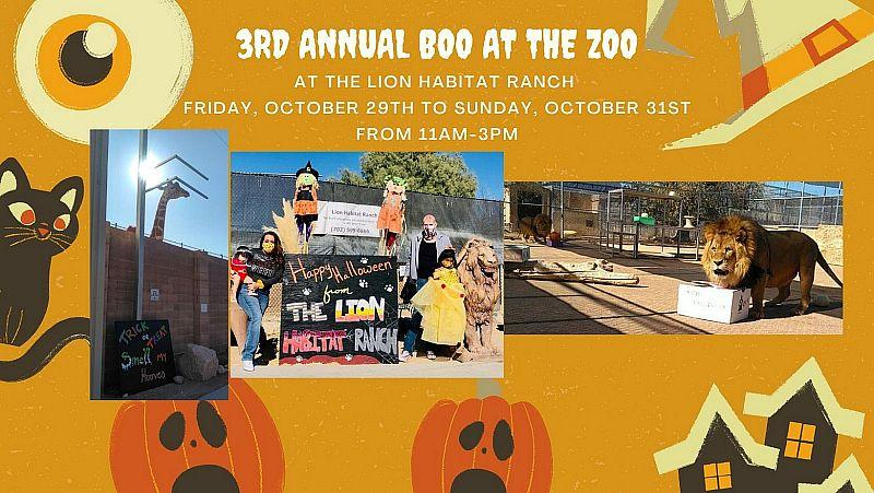 3rd Annual Boo at the Zoo at Lion Habitat Ranch