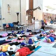 Lion Habitat Ranch Hosts Lion's Breath Yoga Event